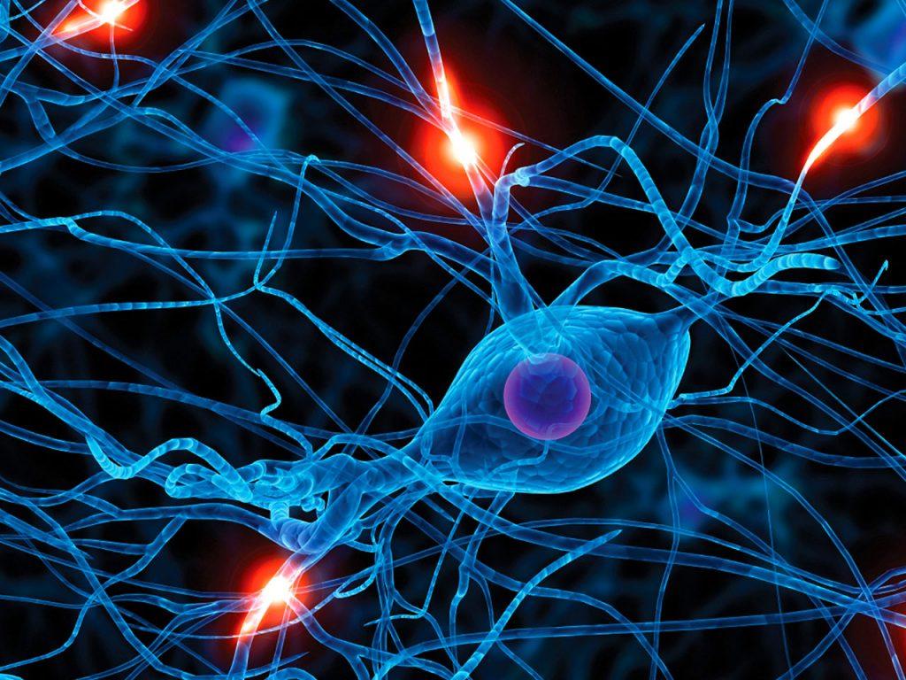 Neuroexperience - firing neurons